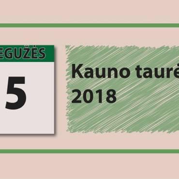 Naujienos Kauno Taurės varžybose