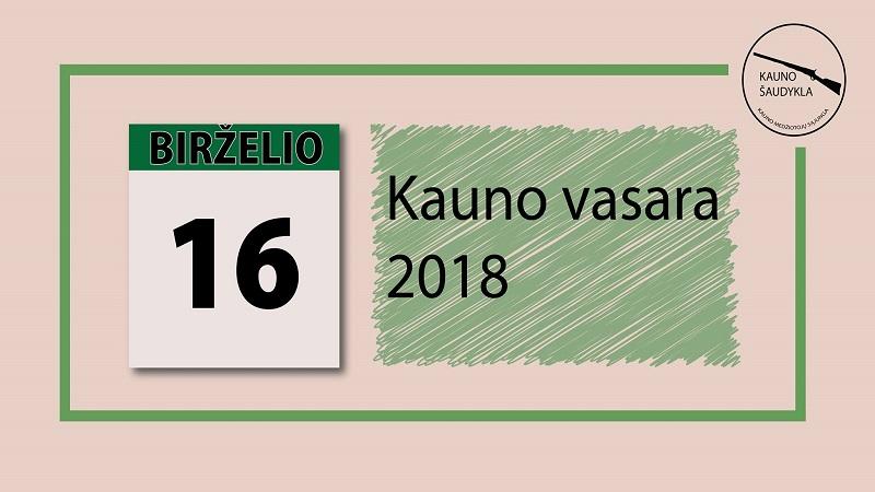 Kauno vasara 2018